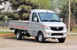 Weiwang T205-D Truck