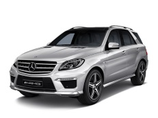 Mercedes-Benz GLE-Class AMG wheels and tires specs icon